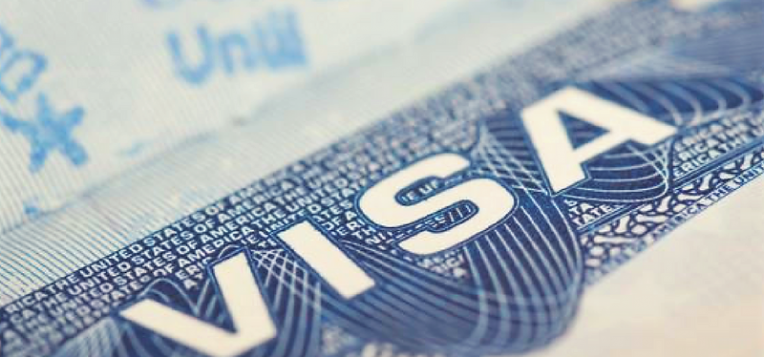 Visa Application | India Network